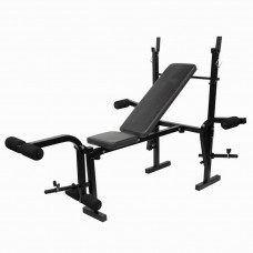 Banca multifunctionala fitness Techfit Power 308